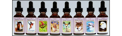 Wild Earth Animal Essences