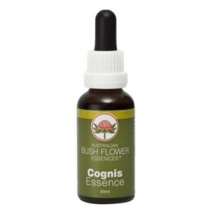 COGNIS Concentration BUSH 30ml