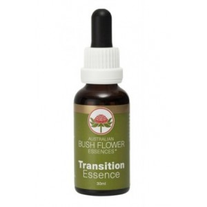 TRANSITION BUSH 30ml