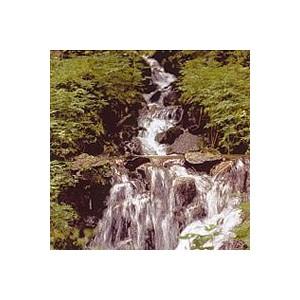 ROCK WATER 15ML PHI