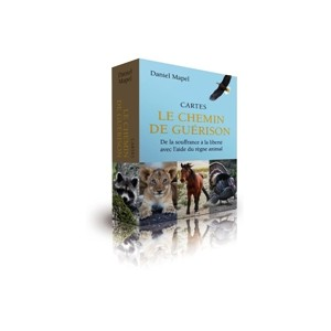 CARTES DU CHEMIN DE GUERISON