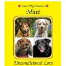Mutt (Corniaud) / amour inconditionnel