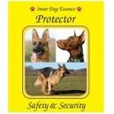 Protector (Protecteur) / Sécurité