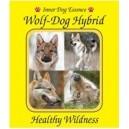 Wolf-dog Hybrid ( sauvagerie saine)