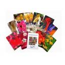 Cartes des 24 élixirs andins