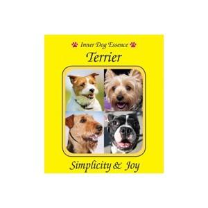 Terrier / simplicité et joie 30ml