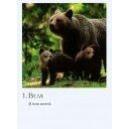 cardset_animals001